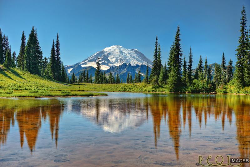 Mount Rainier from Chinook Pass