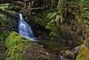Silver-Falls-Trail-08-2010-W