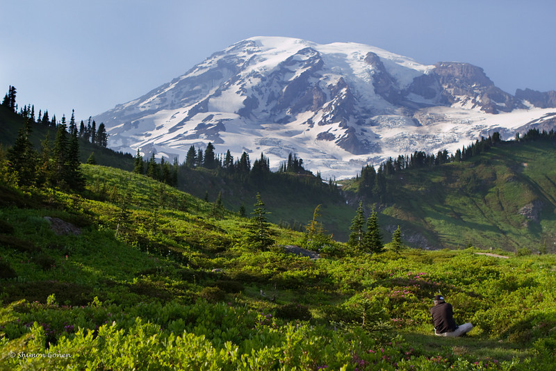 Danny at work, Mt. Rainier