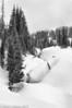 Mt Rainier Winter 02-2013