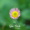 1023  G Purple Flower