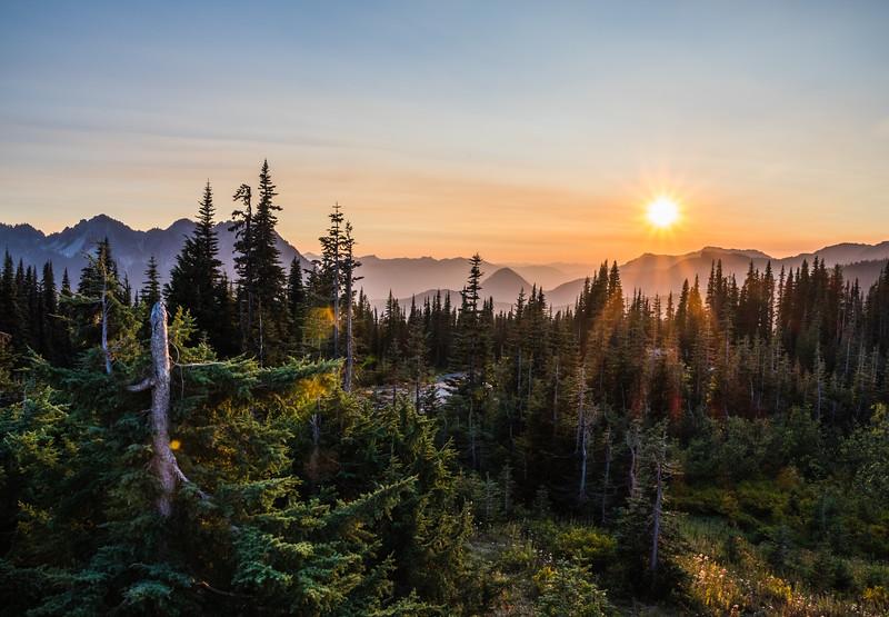 Sunset at Paradise Mt Rainier