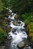 Silver-Falls-2-07-2011