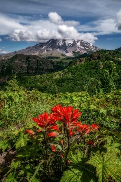 Mt  St  Helens KAR_7919_11670