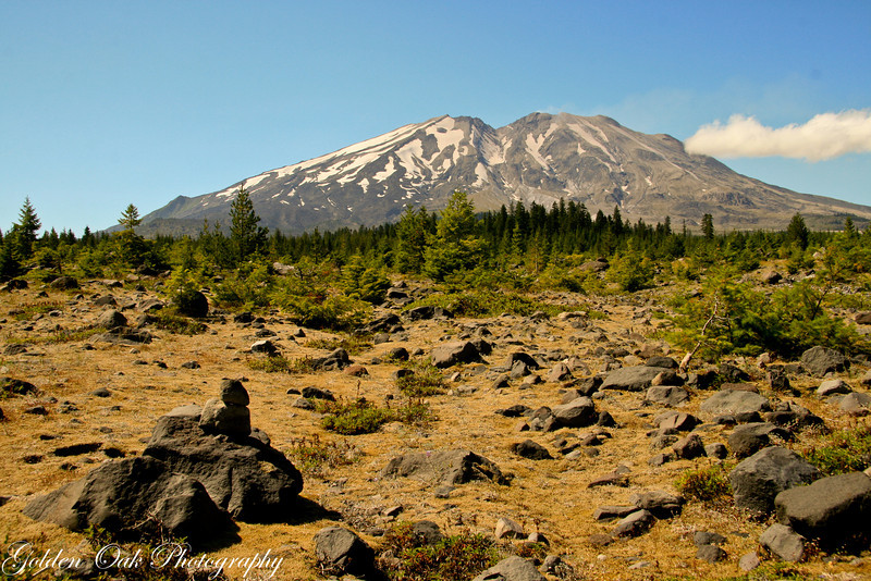 At the edge of the lahar, Mt St Helen's in August 2012, against a blue of a summer sky.