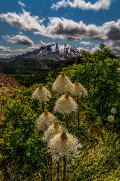Mt  St  Helens KAR_7296_11100