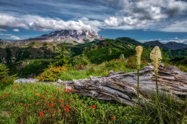 Mt  St  Helens KAR_7923_11674