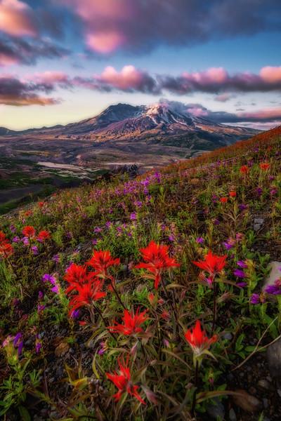 Mt  St  Helens KAR_7229_11033