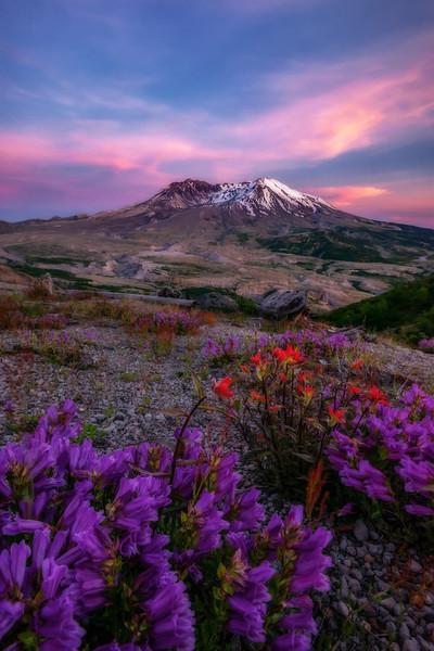 Mt  St  Helens KAR_1258_17257