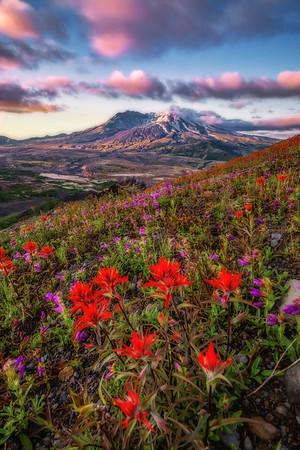 Mt  St  Helens KAR_7229_11033 16x24