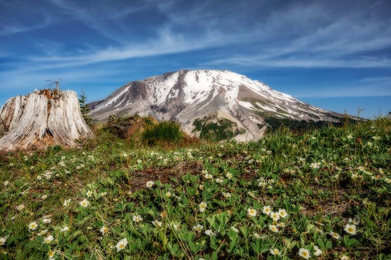 Mt  St  Helens KAR_1103_17108