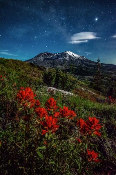 Mt  St  Helens KAR_1332_17331a