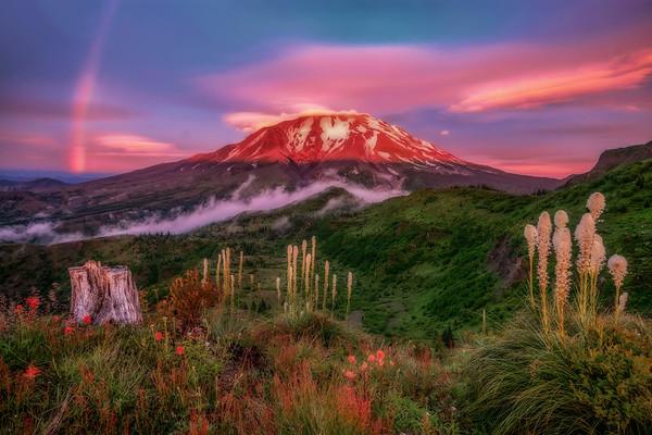 Mt  St  Helens KAR_8000_11751 12x18