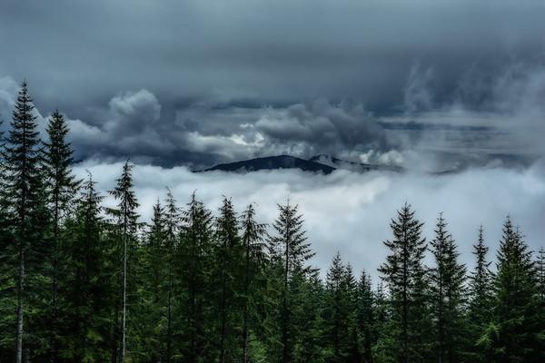 Mt  St  Helens KAR_0990_16996