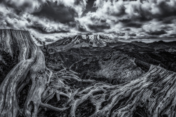 Mt  St  Helens KAR_7252_11056bw