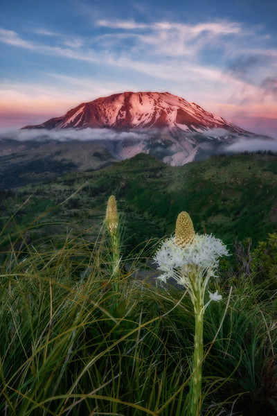 Mt  St  Helens KAR_1173_17178