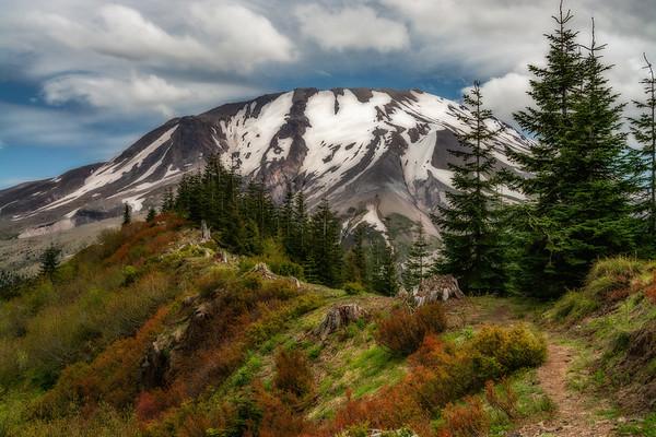 Mt  St  Helens KAR_7337_11141