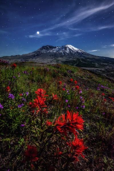 Mt  St  Helens KAR_1302_17301a 16x24