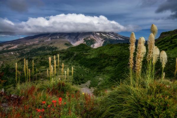 Mt  St  Helens KAR_7926_11677
