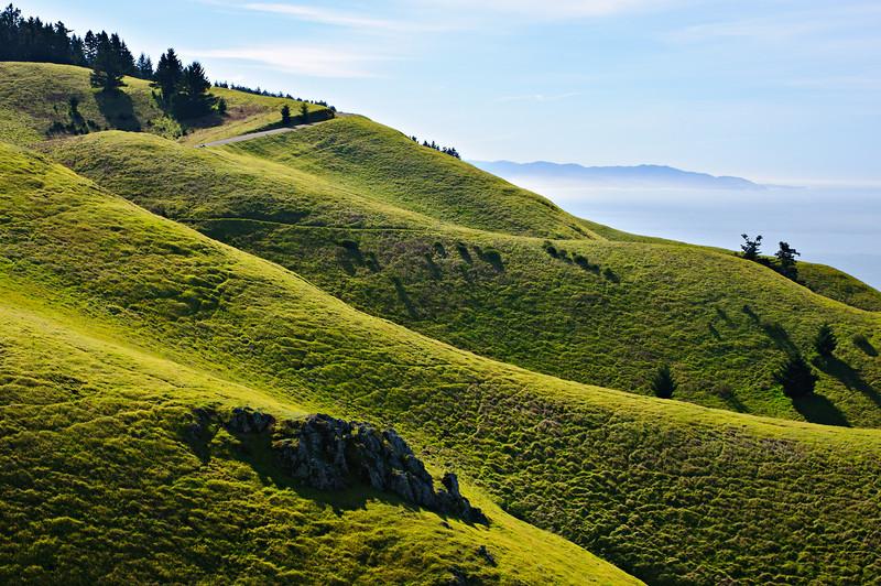 Mt_Tam_Rolling_Hills_morning_DSC7464