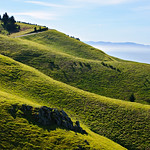 Mt_Tam_Rolling_Hills_morning_DSC7464