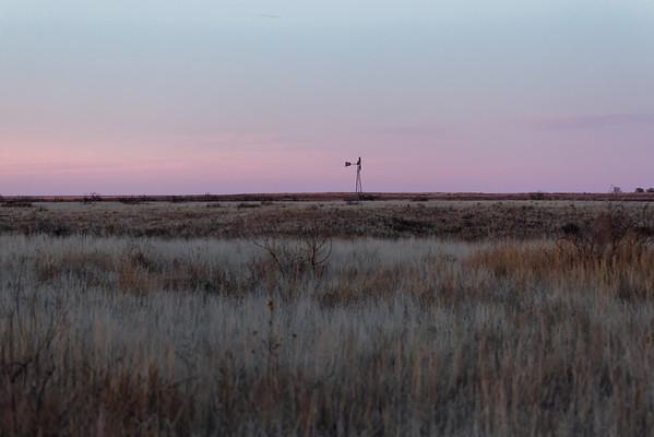 Muleshoe Wildlife Refuge