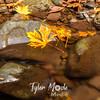 87  G Multnomah Creek Fall