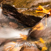 81  G Multnomah Creek Fall