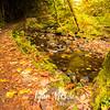 98  G Multnomah Creek Fall
