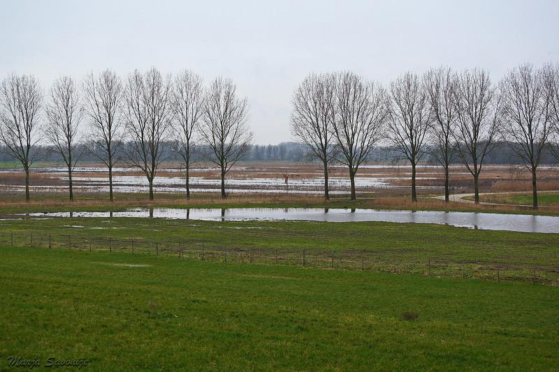 Waterpeil stijgt