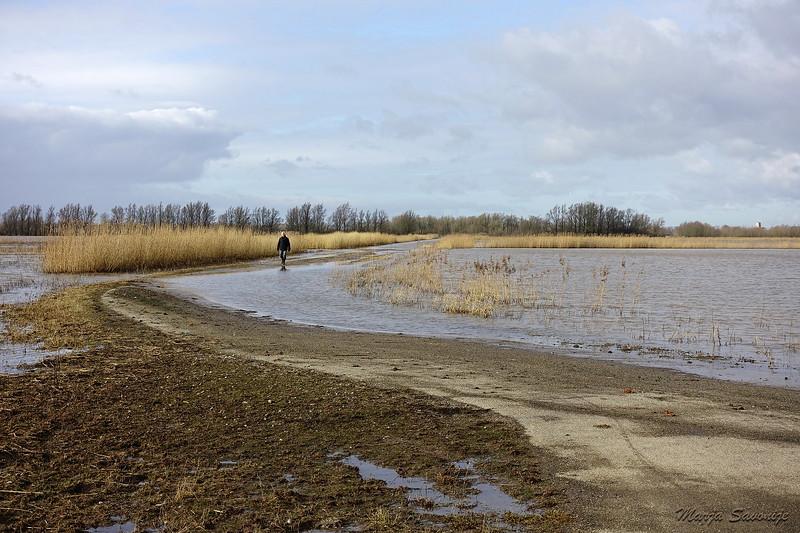 11 februari weg gedeeltelijk boven water