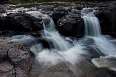 Gooseberry Falls Macro-2057