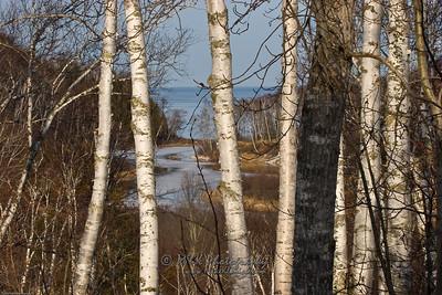 Gooseberry River to Superior-8081