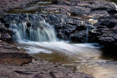Gooseberry Falls Macro-2055
