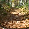 Barrel of Autumn
