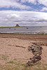 Holy Island Castle & beach