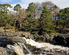 Low Force in Teesdale
