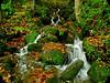 Mini waterfalls Northumberland