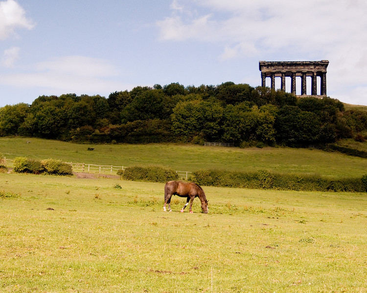 Penshaw horse