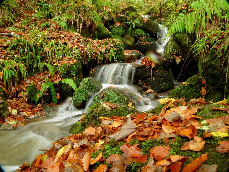 mini waterfalls Northumberland a