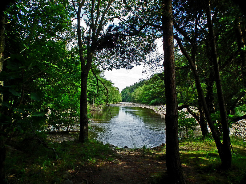 Slit Woods, Westgate, Weardale, Durham