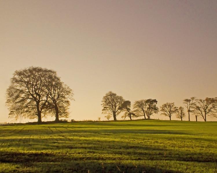 Belsay, Northumberland