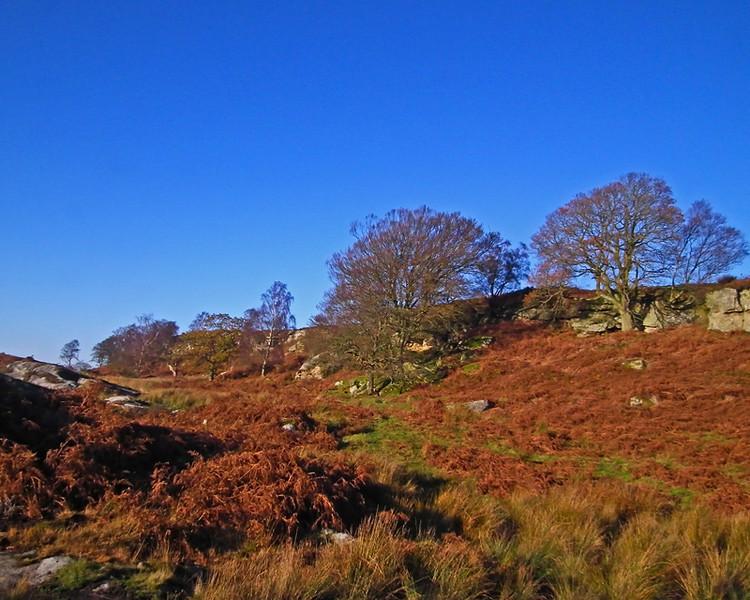 Shaftoe Crags, Northumberland