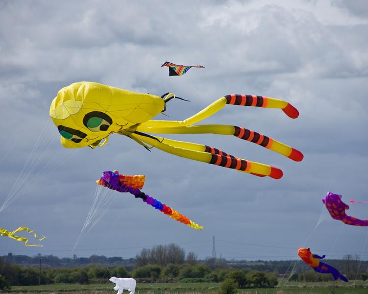 Blyth kite festival 2015