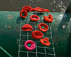 Hand-knitted poppies on Fatfield Bridge to remember the first day of The Somme in WW1 100 years ago, July 1st 1916