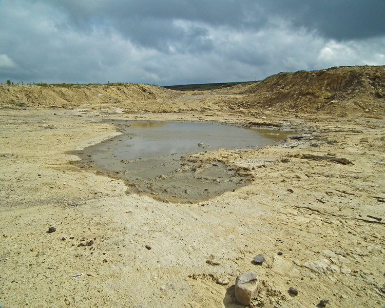 Disused Quarry above Stanhope