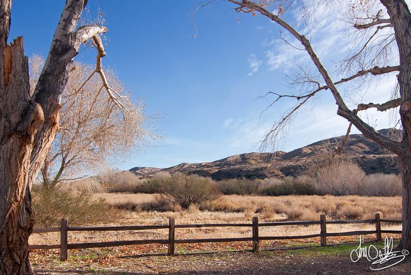 Morongo Valley, CA
