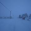 BLUE  *<br /> Langryggen, Myre in February – we might as well have been in an alpine world. The road is veiled by the blizzard, but the light poles stand steadfast and loual along the sides of the roadway…<br /> <br /> BLÅTT II<br /> Langryggen i februar – vi kunne like gjerne vært på høyfjellet. Veien fortaper seg i snøfokket, men lyktestolpene står sta og trofaste i brøytekanten…