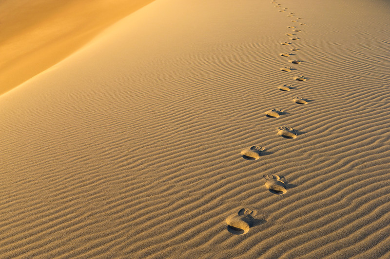 Follow Me | Crescent Dunes, NV