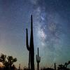 Milky Way Silhouette, Saguaro National Park, Tucson AZ